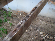 Old deck joists were in bad shape