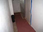 Carpet in basement is protected