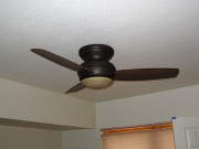 New ceiling fan in guest bedroom